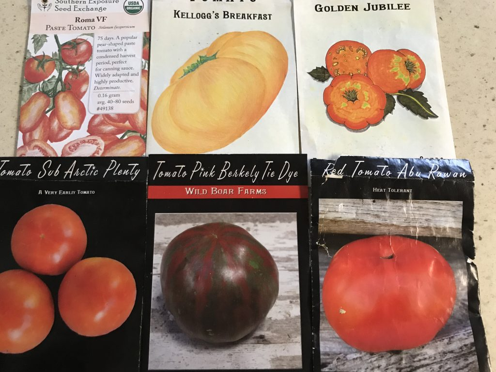 18 tips on growing tomatoes in central Texas
