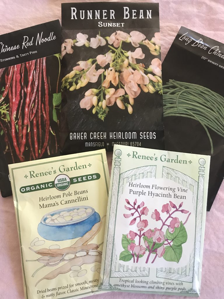How to organize seed packets