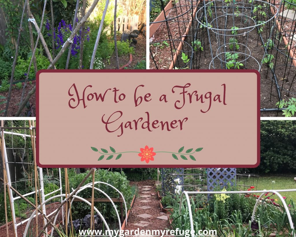 how to be a frugal gardener