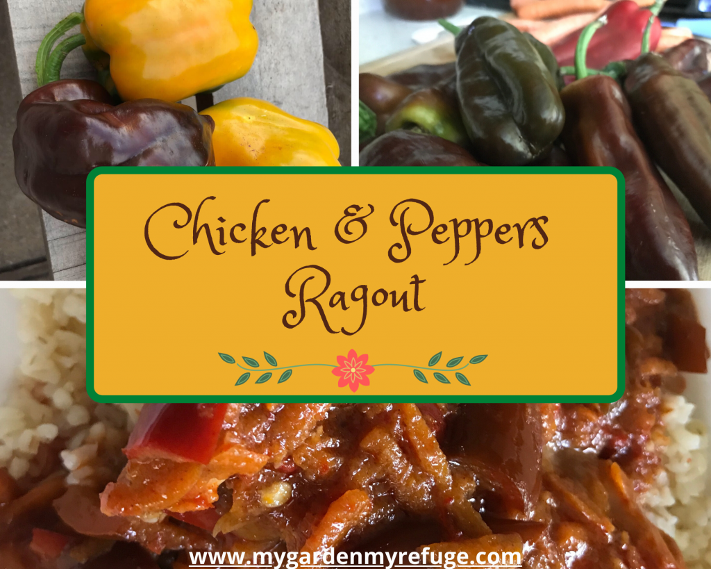 chicken and pepper ragout