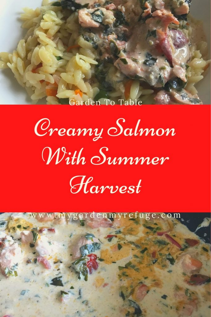 Creamy salmon with tomatoes and basil