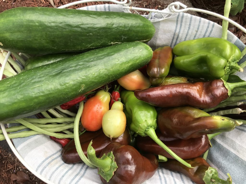 best crops to grow for self-sufficiency