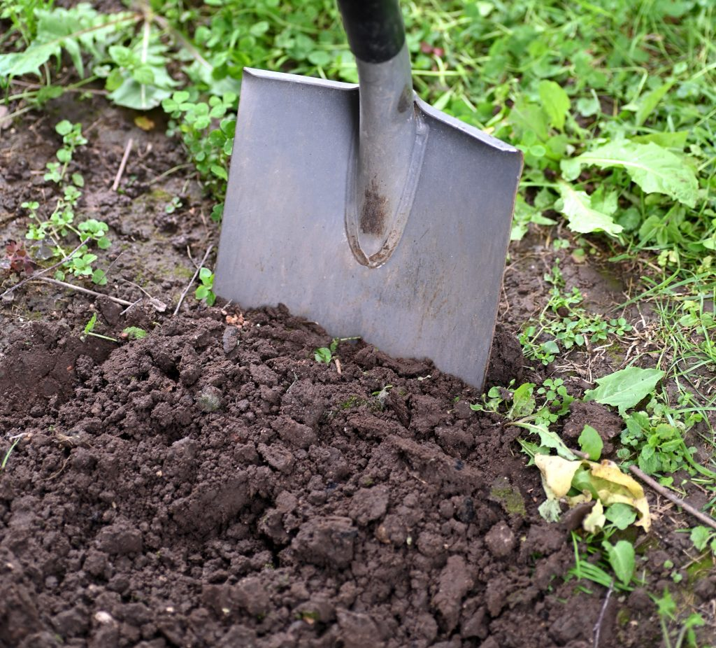 here is how to build good garden soil