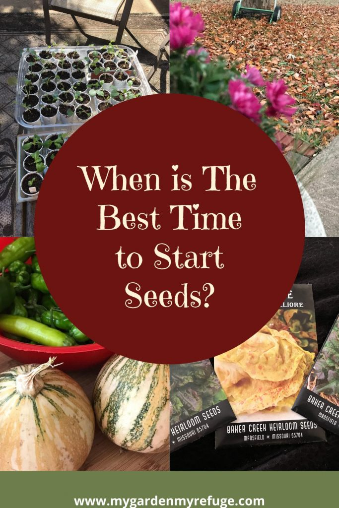 best time to start seeds