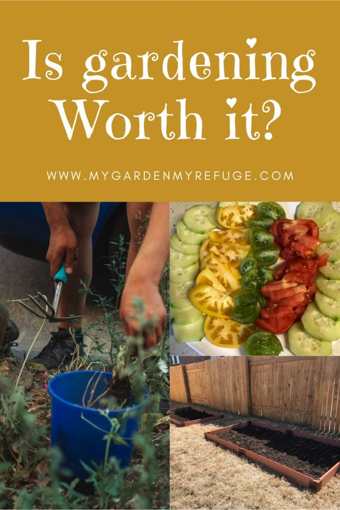 Is starting a garden worth the cost & time?