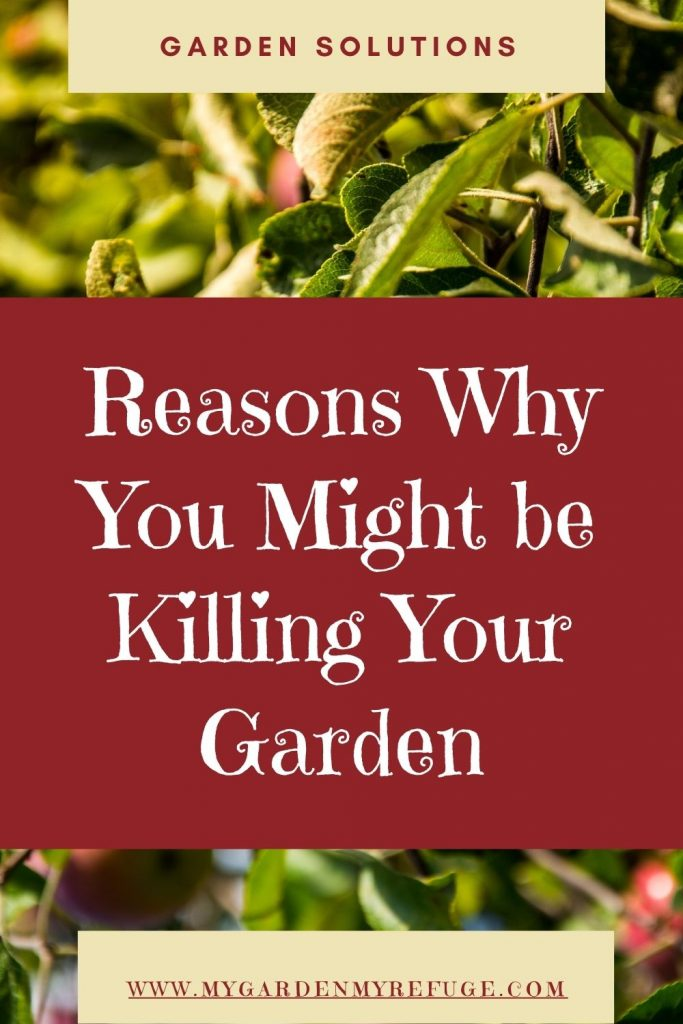 Reasons why you are killing your garden