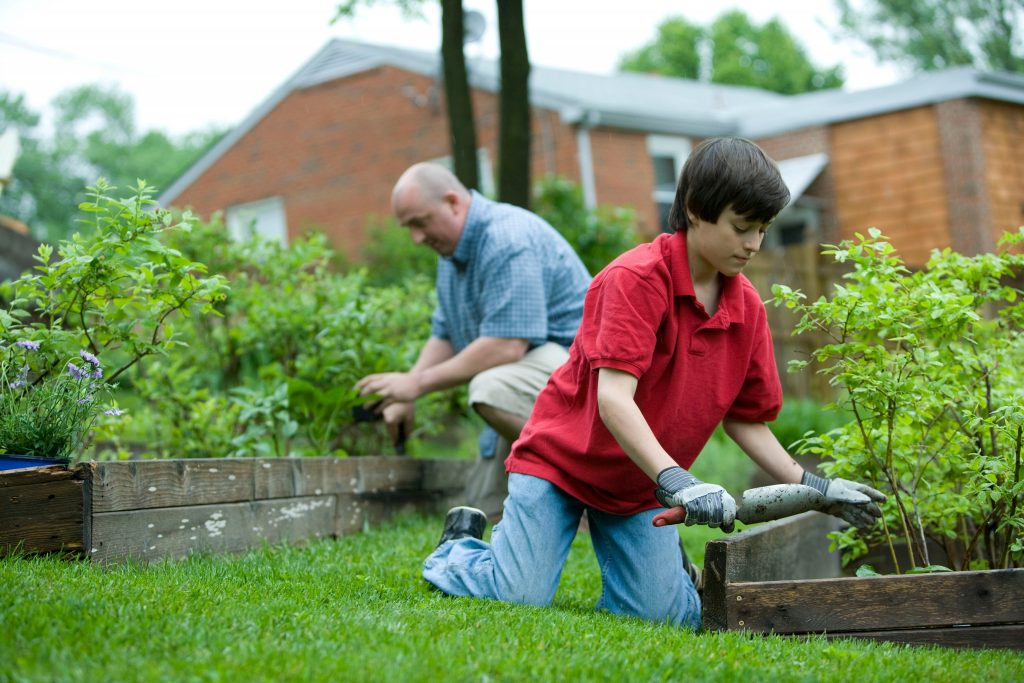9 reasons why raised beds are great for vegetable gardens